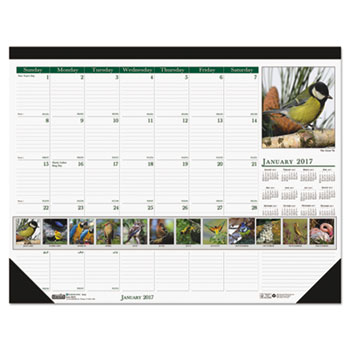 House of Doolittle™ Earthscapes™ 100% Recycled Wild Birds Monthly Desk Pad Calendar Thumbnail