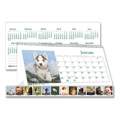 House of Doolittle™ Earthscapes™ 100% Recycled Puppy Desk Tent Monthly Calendar with Photos