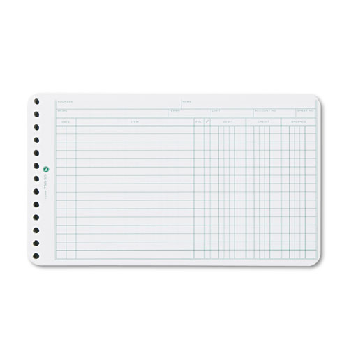 Wilson jones - extra sheets for six-ring ledger binder, 100/pack, sold as 1 pk