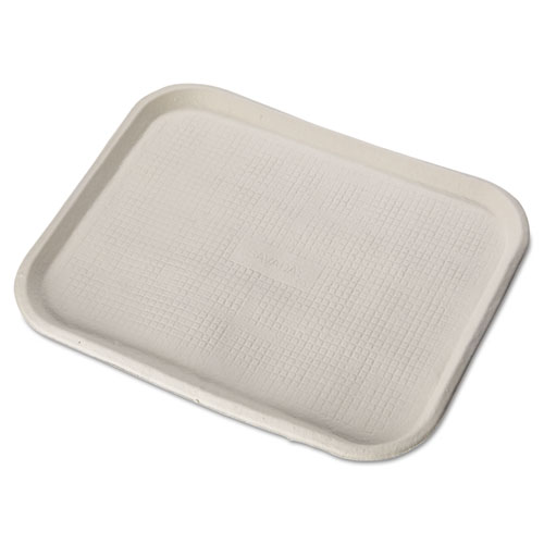 Chinet® Savaday Molded Fiber Food Trays, 1-Compartment, 14 x 18, White, 100/Carton