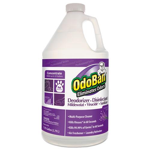 Concentrated Odor Eliminator, Lavender Scent, 1gal Bottle, 4/CT