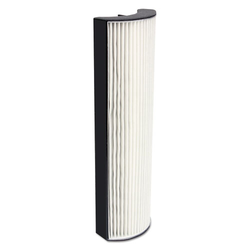 Replacement Filter for Allergy Pro 200 Air Purifier, 5 x 3 x 17 10AP200RF01