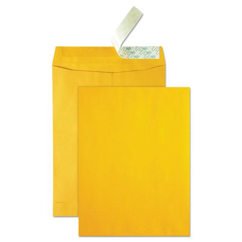 High Bulk Redi-Strip Catalog Envelope, #10 1/2, Cheese Blade Flap, Redi-Strip Closure, 9 x 12, Brown Kraft, 250/Carton   by Plexsupply