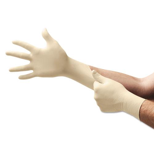 XT Premium Latex Disposable Gloves, Powder-Free, Medium, 100/Box
