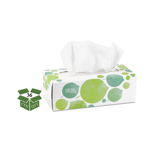 100 Recycled Facial Tissue, 2-Ply, 175 Sheets/Box, 36 Boxes/Carton
