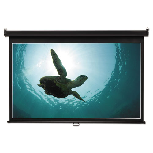 Wide Format Wall Mount Projection Screen, 65 x 116, White | by Plexsupply