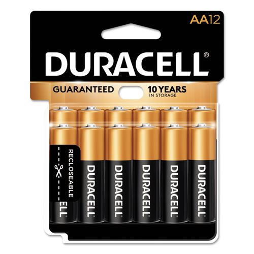 CopperTop Alkaline AA Batteries, 12/Pack | by Plexsupply
