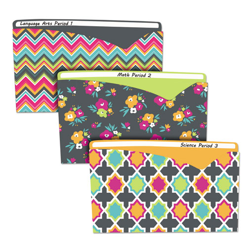 Write-On Fashion Poly File Jackets, Straight Tab, Letter Size, Assorted Colors, 6/Pack