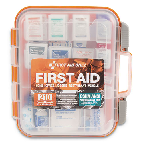ANSI Class A Bulk First Aid Kit, 210 Pieces, Plastic Case