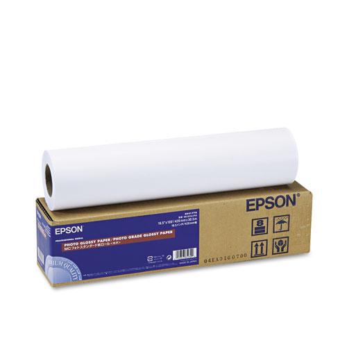Epson® Premium Luster Photo Paper Roll, 10 mil, 13