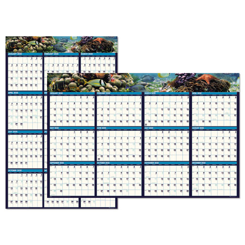 Recycled Earthscapes Sea Life Scenes Reversible Wall Calendar, 24 x 37, 2020   by Plexsupply