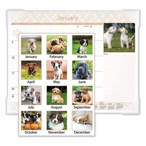 Puppies Monthly Desk Pad Calendar, 22 x 17, 2021
