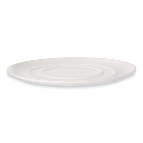 WorldView Sugarcane Pizza Trays, 14 x 14 x 0.2, White, 50/Carton