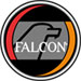 Falcon® Safety Products Logo